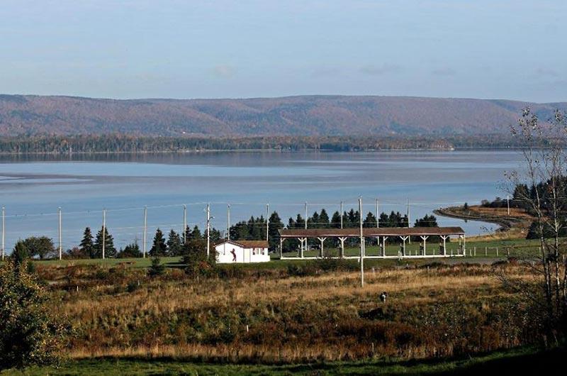 Dundee Drive Golf Practice Range