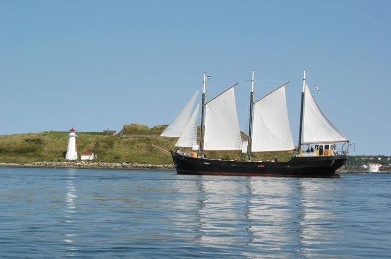 tall ship silva tourism nova scotia. Black Bedroom Furniture Sets. Home Design Ideas
