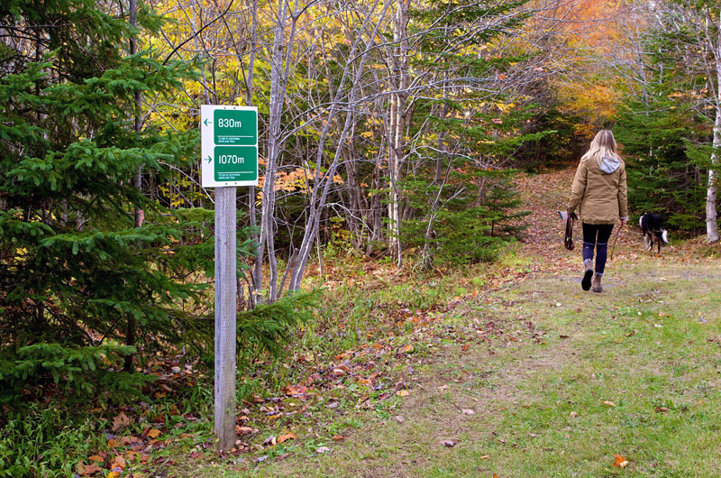 Port Hawkesbury Community Trails