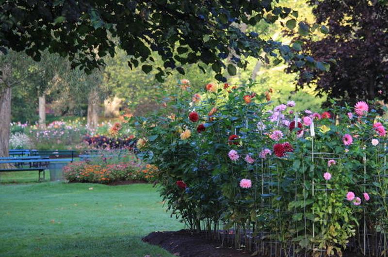 Halifax Public Gardens Tourism Nova Scotia