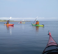 Improve your sea kayaking skills in our classes.