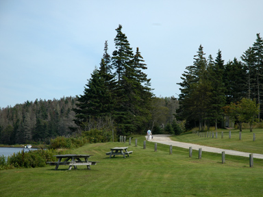 Graves Island Provincial Park Chester Ns