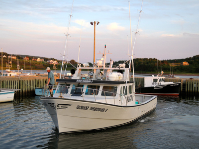 Dawn Treader Tuna Charters