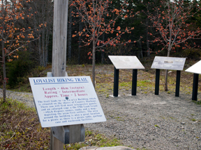Black Loyalist Heritage Trail