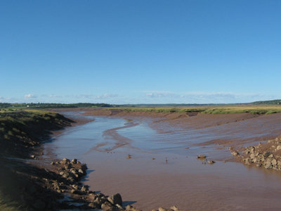 Viewing Bay of Fundy tidal mud flats