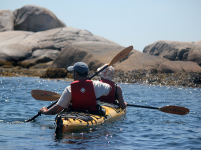 Guests paddling the rugged coastline