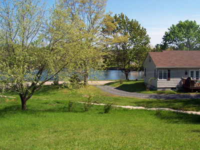 1.9 acres of oceanview, mature fruit trees & woodland