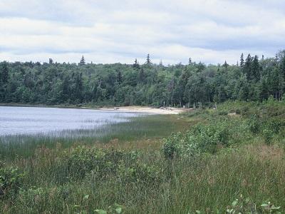 Dalem Lake Provincial Park Tourism Nova Scotia